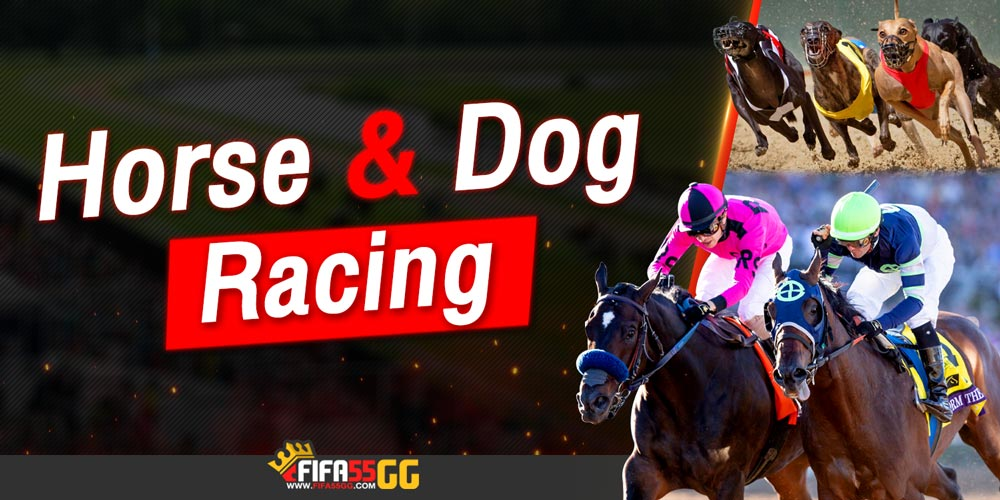 Horse-and-Dog-Racing-fifa55gg